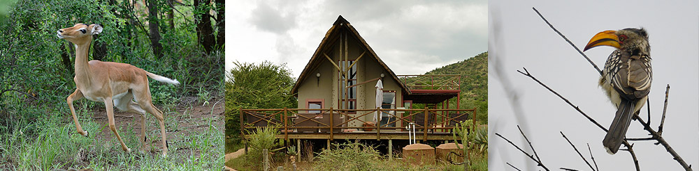 pilanesberg private lodge national park banner
